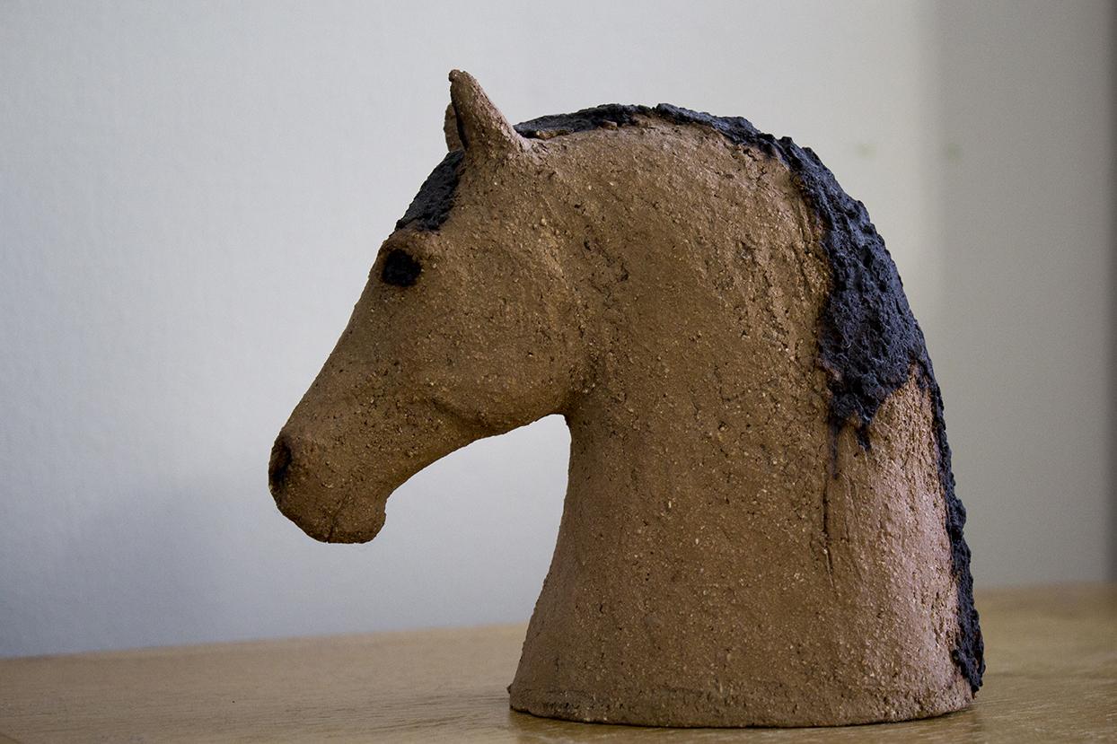 Ruunivoikko hevosen pää